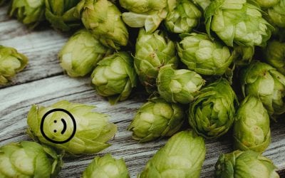 Heading Towards Hoppy Happiness!